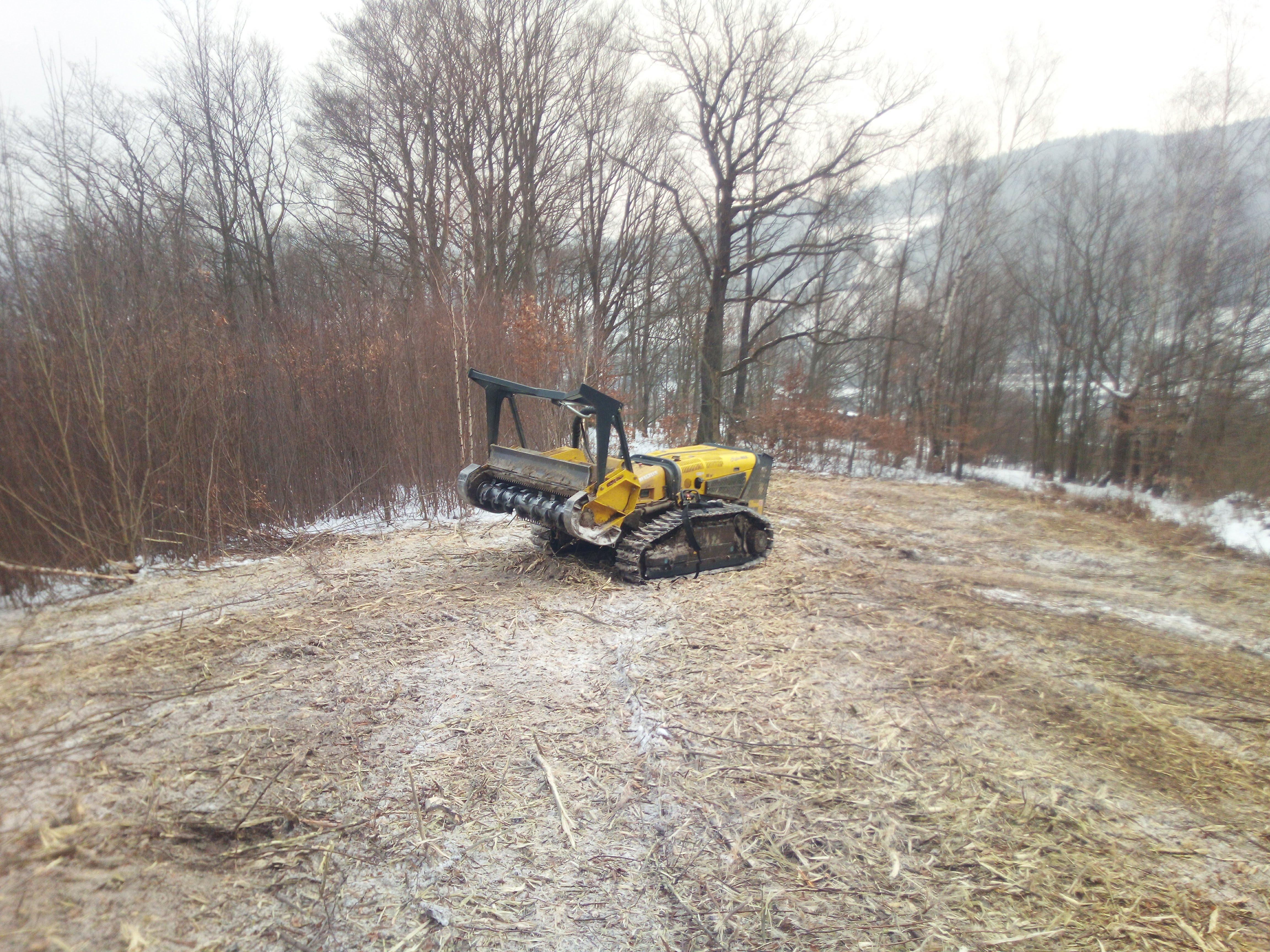 mulčování náletových dřevin